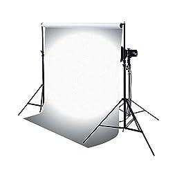 Savage Translum Backdrop (Light Weight, 60\