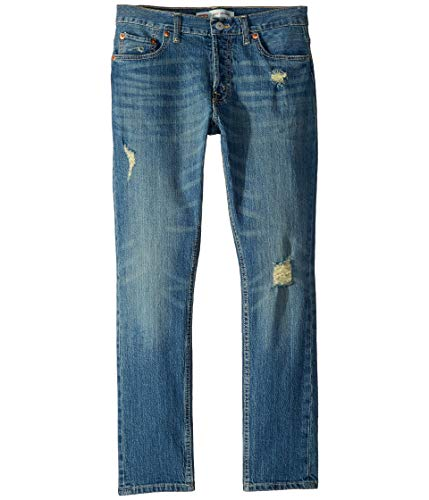 Levi's Big Boys' 501 Skinny Fit Jeans, English Red, 10