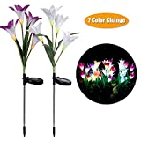 Solar Garden Stake Lights Outdoor -Detective Solar Powered Garden Stake Lights with 8 Lily Flower,Auto Changing Color LED Solar Light for Garden Lawn Grass-plot (2 Pack,Purple & White)