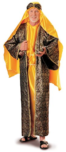 [Men's Melchior Wiseman Costume, Multi, Standard] (Nativity Costumes Adults)