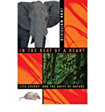img - for In the Beat of a Heart : Life, Energy, and the Unity of Nature(Hardback) - 2006 Edition book / textbook / text book