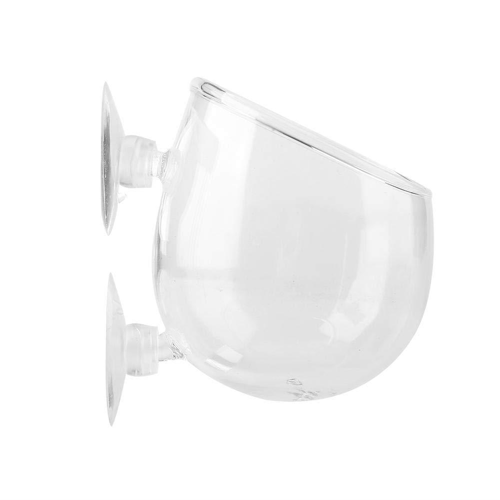 Vaso per tazza in vetro vegetale con 2 ventose Accessorio acquatico per acquario