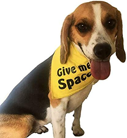 Handmade in Ireland for Small Medium and Large Dogs Communication Bandana 24 yellow GIVE ME SPACE dog bandana- THE Accessory for anxious or nervous dogs that need space Dimples Dog Neckerchief
