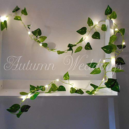 new product 2c143 aee7e Ivy Fairy Lights String Lights 2m 20 LED - Wedding Decorations - AA Battery  Powered - Warm White - Indoor Leaves - Ivy Garland with Lights - Fairy ...