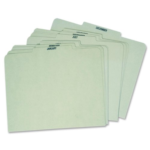 Globe Weis Month Guides, January to December, 1/3 Cut Center Tabs, Letter Size, Light Green (12PX91) (Cut Top Tab Monthly File)