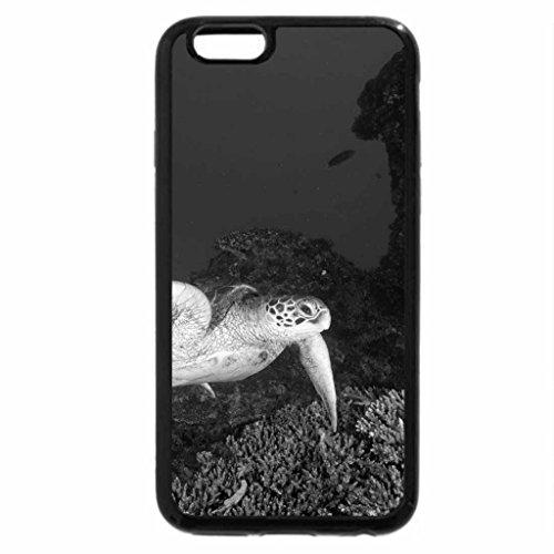 iPhone 6S Plus Case, iPhone 6 Plus Case (Black & White) - Tranquil Turtle