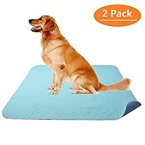 KOOLTAIL Washable Pee Pads for Dogs – Waterproof Dog Mat Non-Slip 2 Pack 36″ x 41″ Whelphing Pad Puppy Training Pad for Dog Playpen