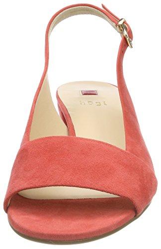 HÖGL Women's 5-10 2102 8900 Sling Back Heels Orange (Koralle 8900) 5bCT1OPJ