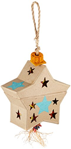 Planet Pleasures Parrot Pinata - Planet Pleasures Parrot Pinata Stars Foraging Box Bird Toy, Medium