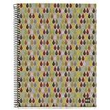 MiquelriusEcoRain EcoRain Cardboard Notebook, (8.5 x 11, 4-Subject, College Ruled) 120 SHEETS