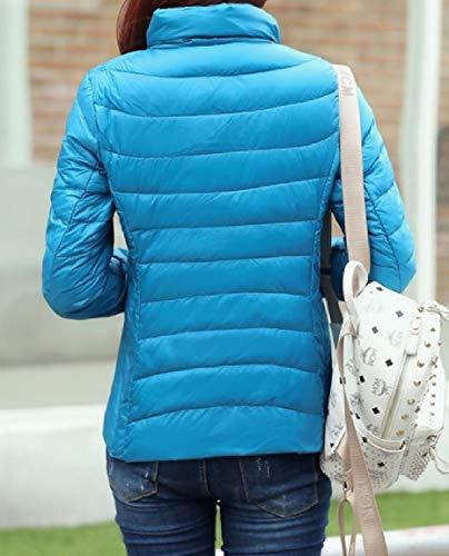 Blue Lake Collar Coat Size Down Stand Packable Plus MogogoWomen Ultra Lightweight wqz7UxvF