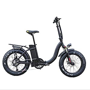 HWOEK City Folding Electric Bike, All-Terrain Tires 20 Inch Adults Snow Electric Bicycle 6 Speed Dual Disc Brakes 48V 500W Motor