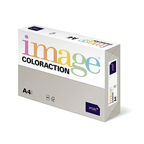 Coloraction 838A 160S 30 Antalis Papier couleur A4 160 g/m² Gris/30 (Import Allemagne)