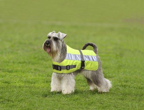 Petlife Warnweste für Hunde, mit warmem Thermofutter, 50,8 cm, fluoreszierendes Gelb