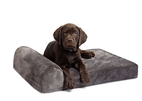 Internet's Best Memory Foam Lounger Pet Bed | Small | 24 x 18 Inch | Ultra Soft Plush Pet Bed | Headrest Pillow Top | Grey - Orthopedic Dog Bed 18x24