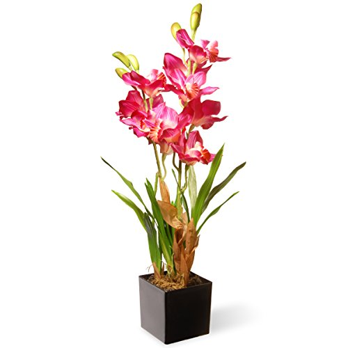 (National Tree 25 Inch Purple and Pink Orchid Flowers with Black Square Base (NF36-5289S))