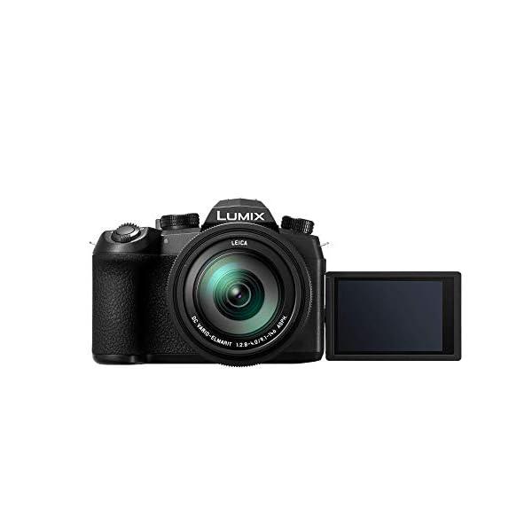 RetinaPix Panasonic Lumix DC-FZ10002 20MP 4K Point and Shoot Digital Camera (Black) with 16X Optical Zoom Leica DC Vario-ELMARIT 25-400mm F2.8-4.0 Lens