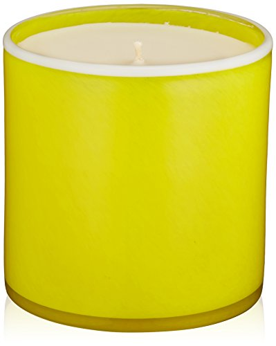 (LAFCO New York House & Home Candle, Cabana White Grapefruit)