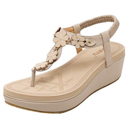 (Beach Sandal for Women Clip Toe Comfortable Flip Flop Elastic Band Creepers Sandals)