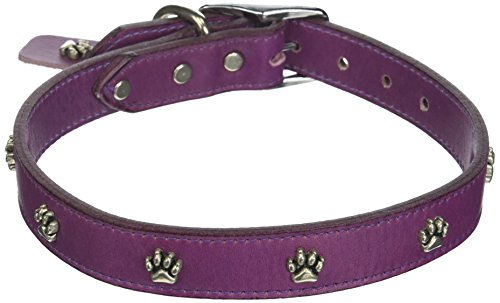 OmniPet Signature Leather Dog Collar with Paw Ornaments, Grape, 24