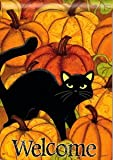 Black Cat in Pumpkin Patch Halloween Garden Flag