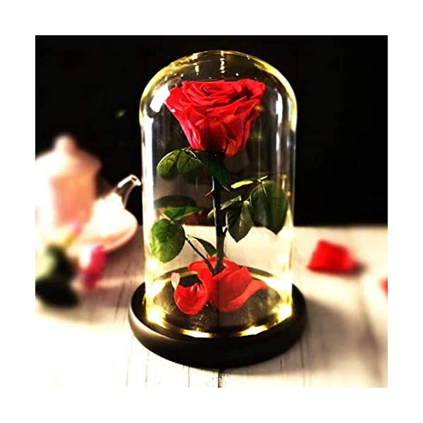 Preserved Real Rose Beauty and The Beast Enchanted Rose, Preserved Fresh Rose in Glass Dome Romantic Forever Gift for Her Wedding Valentine's Day Christmas Mothers Day (Preserved Real Rose)