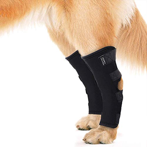Luwint 1 Pair Dog Rear Leg Braces - Elastic Canine Arthritis Ankle Protection Knee Compression Sleeves Hind Hock Joint Warps with Heel Wounds for Loss of Stability Injury and Sprain Protection (M)