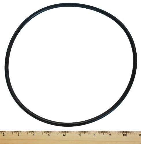 (Pentair U9-373 Cord-Ring for Seal Plate Replacement for Select Sta-Rite Pool and Spa)
