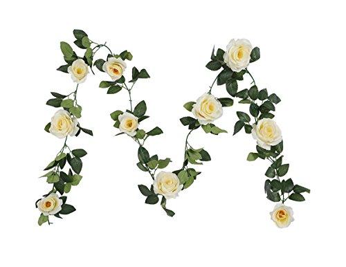 Pink Floral Vine (Houda Vintage Artificial Fake Silk Flowers Rose Garland Plant Vine Home Garden Wall Wedding Decor 2PCS (Champagne))