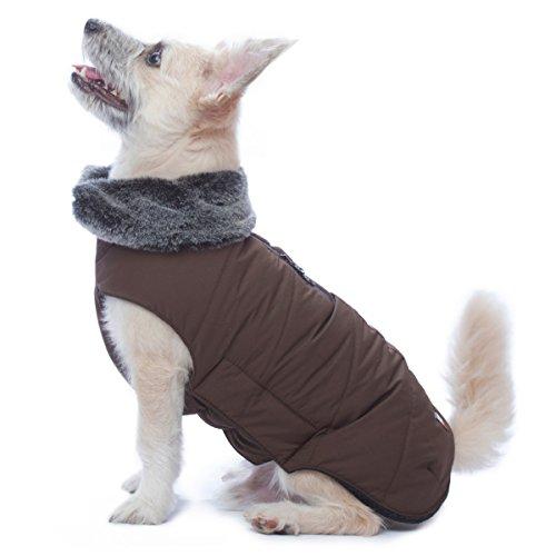 Tamarack Jacket (Dog Gone Smart Jacket)