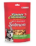 Yummy Chummies Arctic Paws Salmon Crunchies 4-Ounce Crunchy Treats