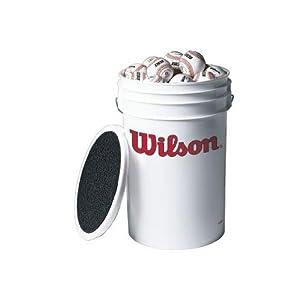 Wilson Champion Series Baseballs (One Dozen)