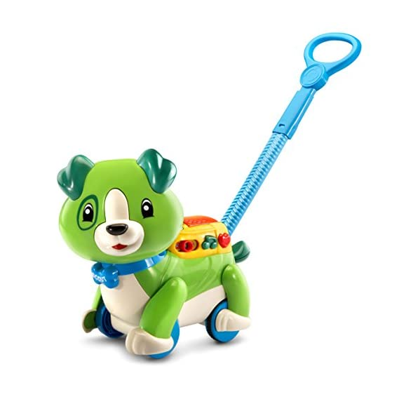 Leapfrog Step and Learn Scout