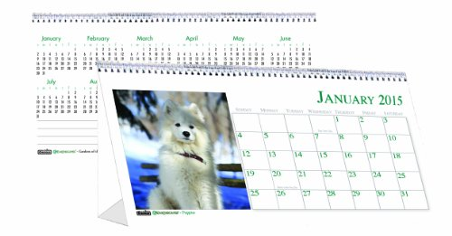 House of Doolittle Earthscapes Puppy Desk Top Tent Calendar 12 Months January 2015 to December 2015, 8.5 x 4.25 Inches, Color Photo, Recycled (HOD3659)