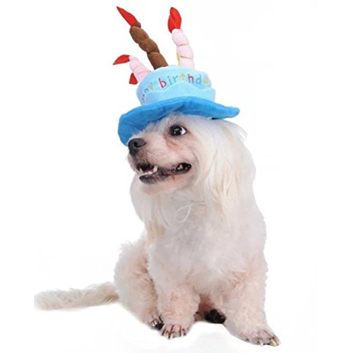 Tinksky Cat Dog Pet Happy Birthday Party Hat with Cake and 5 Colorful Candles Design Cosplay Costume Accessory Headwear (Blue)