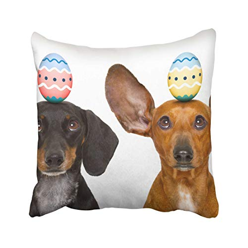 Emvency Colorful Pet Funny Dachshund Sausage Dogs Easter Bunny with Egg on Head Looking Up White Two Holiday Throw Pillow Covers 20x20 Inch Decorative Cover Pillowcase Cases Case Two Side ()