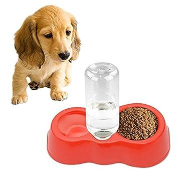 JIALUN-Productos para mascotas Suministros para mascotas, comida para gatos para perros Plato +