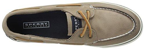 braun Bahama amp; Weathered Marrone Sneaker Worn Basse greige Sperry Donna 6q84gd8