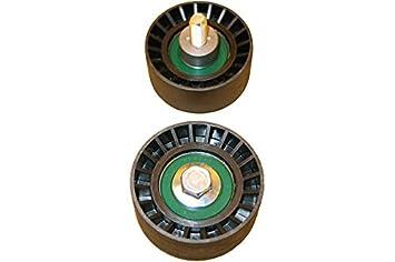 Kavo DID-1001 Polea inversión/guía, correa distribución: Amazon.es: Coche y moto