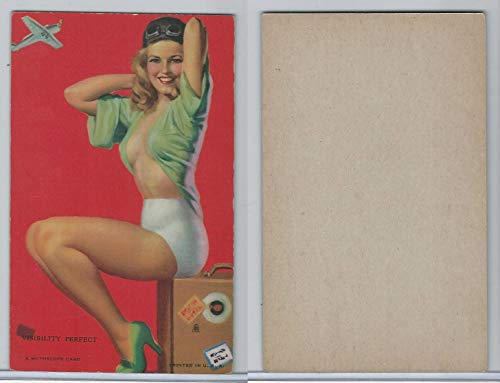 W424-2b Mutoscope, Artist Pin-Up Girls, 1945, Visibility Perfect, Airplane
