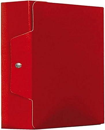 Caja proyectos estándar, color rojo Dorso 15: Amazon.es: Oficina y ...