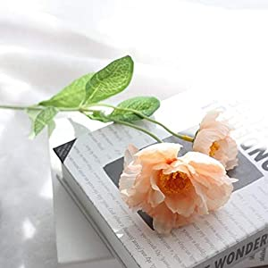 ShineBear 6pcs/lot 2 Heads Poppy Artificial Flower for Wedding Decoration Silk Flower Rosemary for Home Office Decor Fake Flower - (Color: Champagne) 84