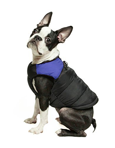 Gooby Padded Cold Weather Vest for Small Dogs with Safe Fur Guard Zipper Closure, Blue, Small by Gooby