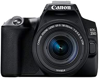 Canon EOS 250D y objetivo EF-S 18-55 IS STM