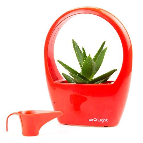 mini greenhouse with light - 5