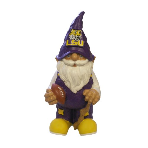 Lsu 2008 Team Gnome