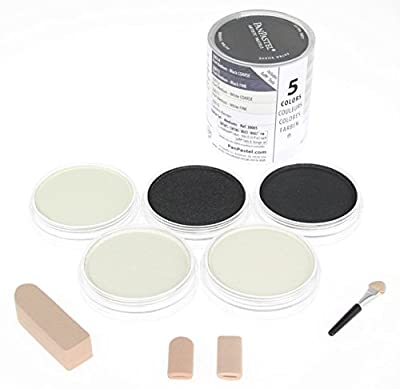 Colorfin PanPastel Mediums Artist Pastels Set, 9ml, 5-Pack