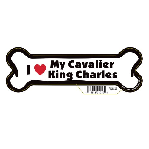 Cavalier King Charles Dog Bone Magnet