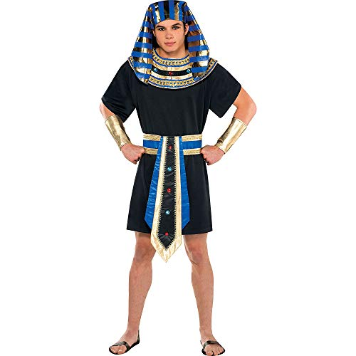 Egyptian Pharaoh Costume - Standard -