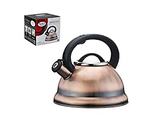 Premium whistling tea kettle with mesh tea for Alpine cuisine tea kettle